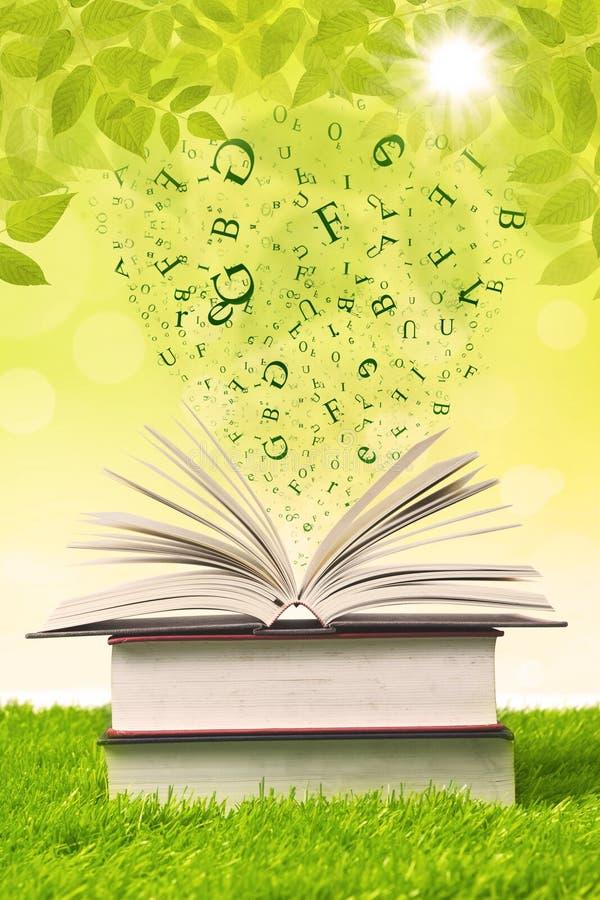 Boek met vliegende brieven op groen gras stock illustratie