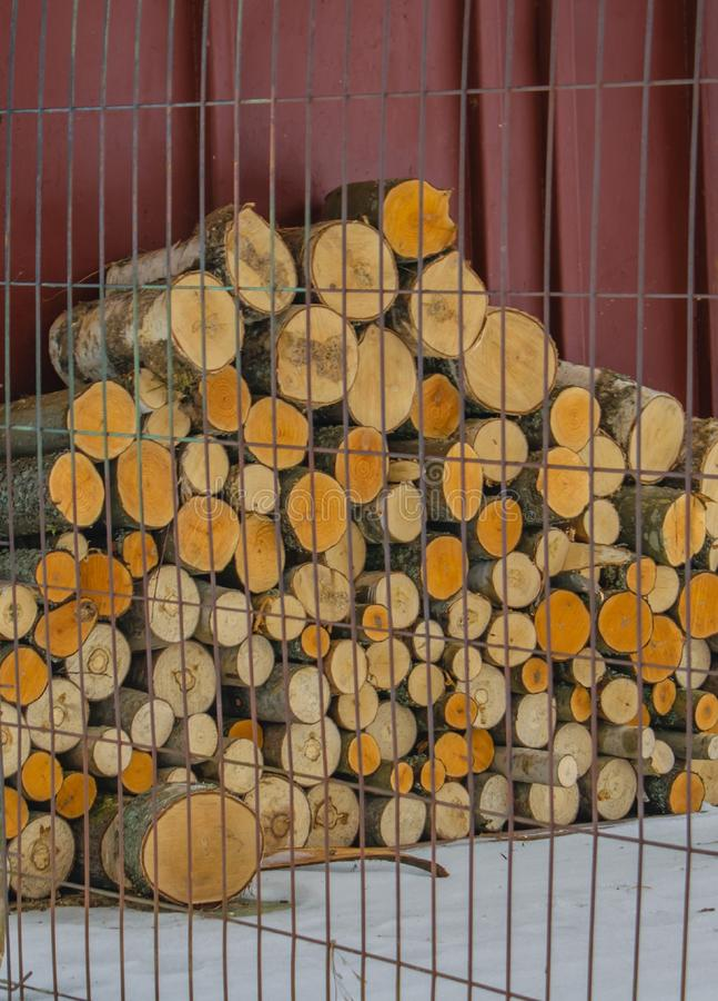 Stapel Brennholz für den Winter lizenzfreies stockfoto