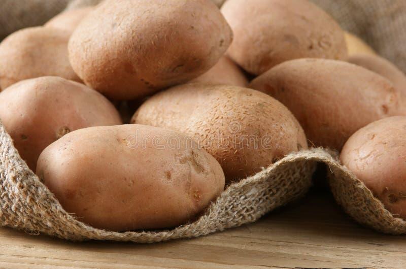 Stapel der Kartoffeln lizenzfreie stockfotos