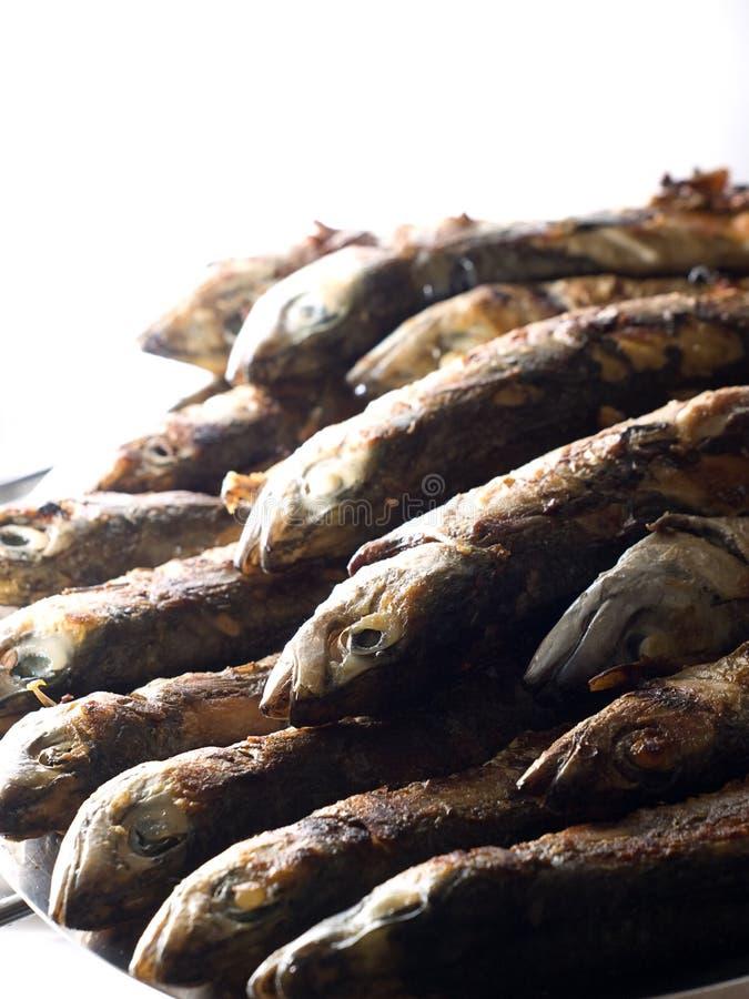 Stapel der Makrelen stockbild