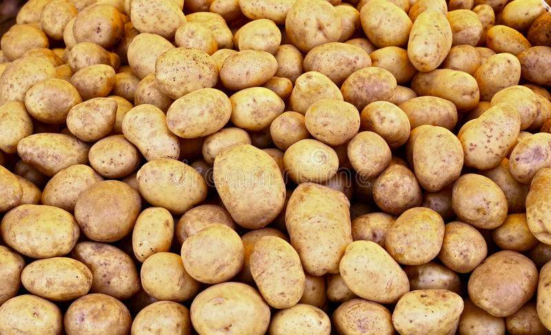 Stapel der rohen Kartoffeln stockbild