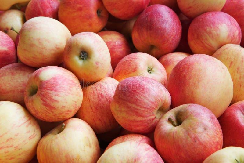 Stapel der roten und gelben Äpfel stockfotos