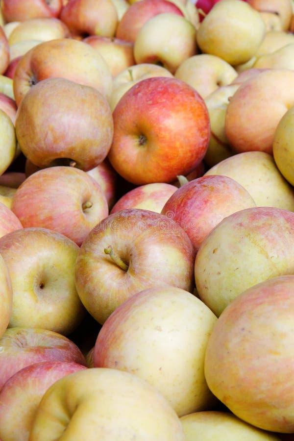 Stapel der roten und grünen Äpfel lizenzfreie stockbilder