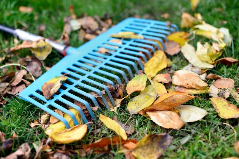 Stapel des Falles verlässt mit Fächerbesen auf einem Rasen stockbilder