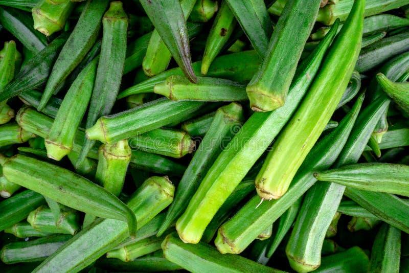 Stapel des frischen grünen essbaren Eibisches angezeigt am Markt eines Landwirts stockfotos