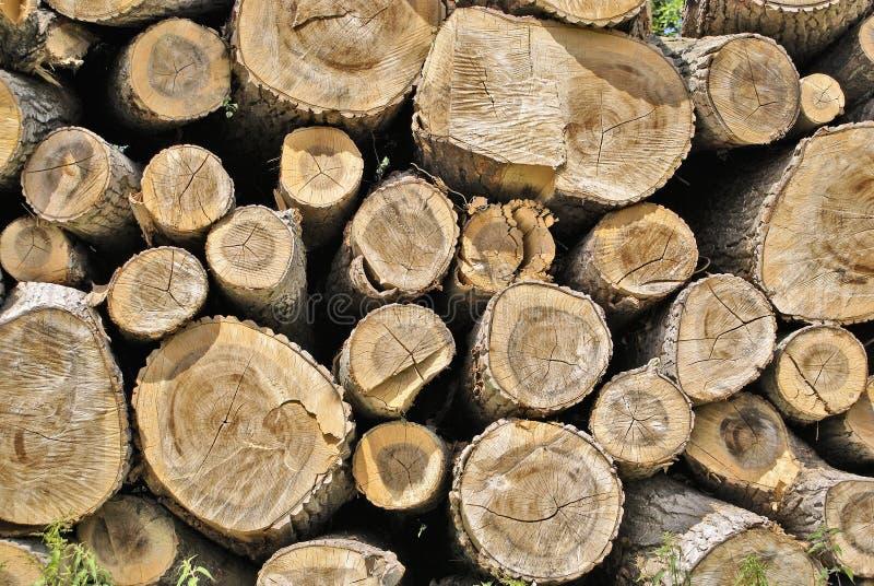 Stapel des Holzes lizenzfreie stockbilder