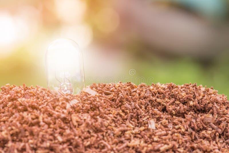 Stapel des Sägemehls mit Lampenkonzept-Abwehrenergie lizenzfreie stockfotos