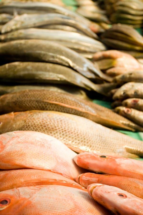 Stapel Fischfleisch auf dem traditionellen Markt stockfotos