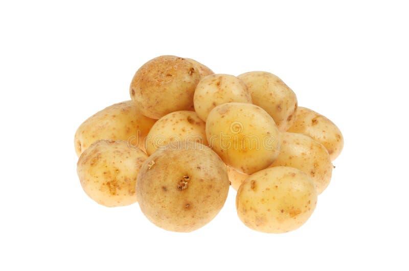 Stapel Frühkartoffeln stockfotografie