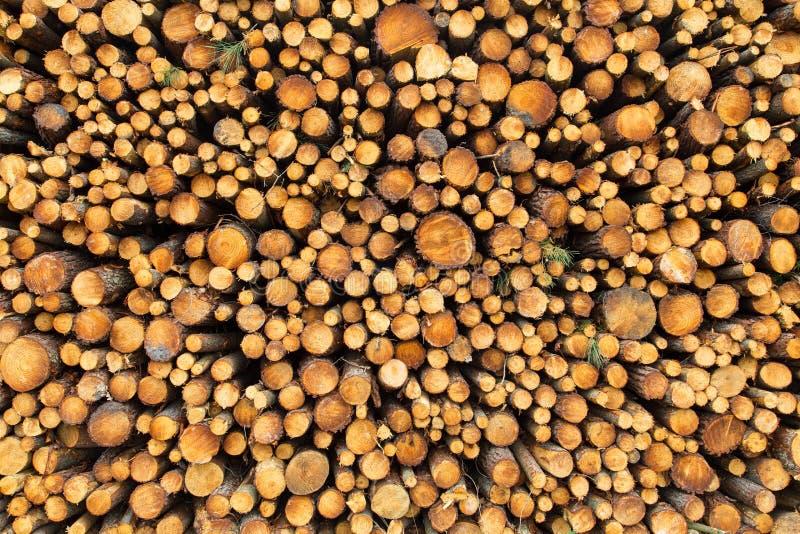 Stapel Holz stockfotos