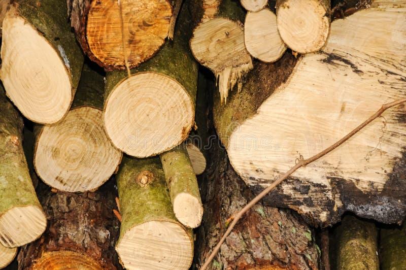 Stapel Holz lizenzfreies stockbild