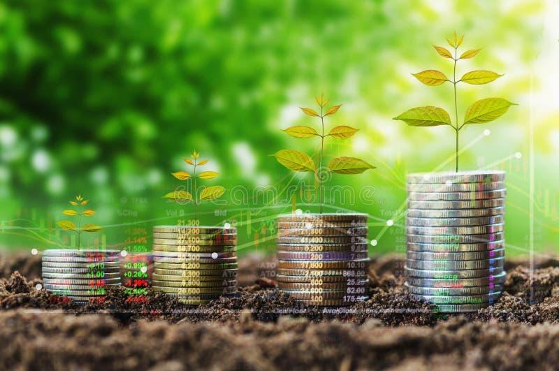 Stapel Münzenwachstumsgeld- und -baumkonzeptfinanzindizes auf n lizenzfreie stockfotos