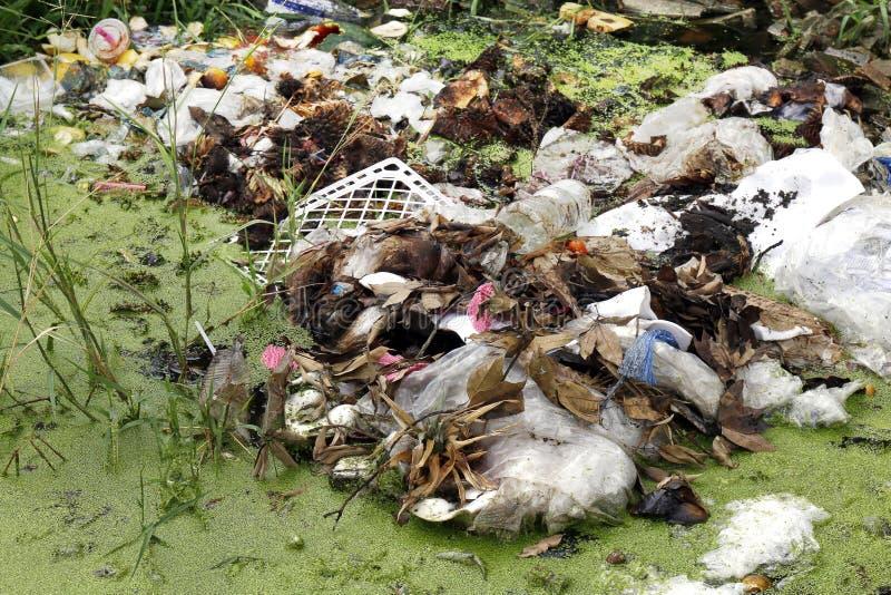 Stapel van Afval plastic zakken en droge bladeren, Plastic zakken in het rotte meerafvalwater, Huisvuilmos in rivier van het riol stock foto