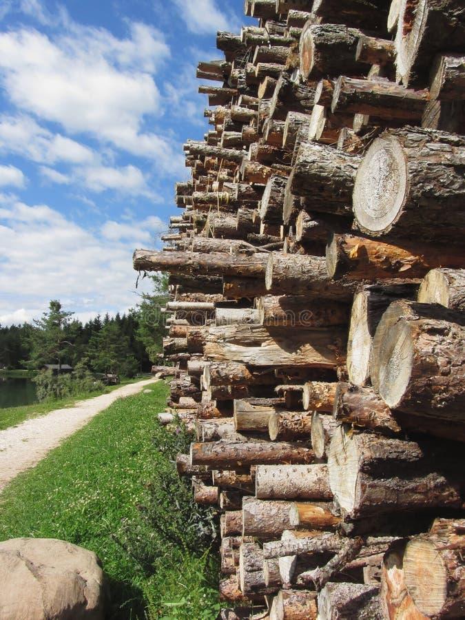 Stapel van brandhout met bos en hemelachtergrond Fie scilliar allo, Zuid-Tirol, Italië stock foto