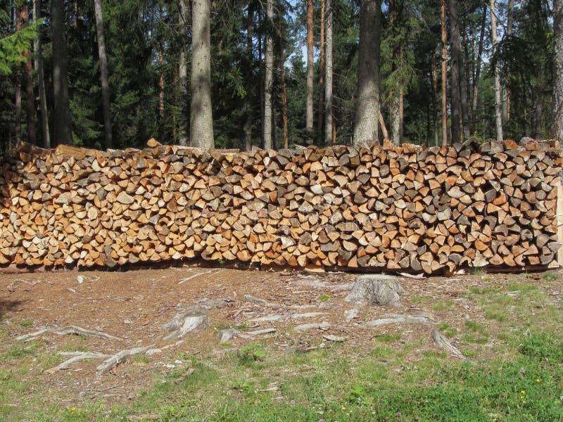 Stapel van brandhout met bosachtergrond Fie scilliar allo, Zuid-Tirol, Italië royalty-vrije stock afbeelding