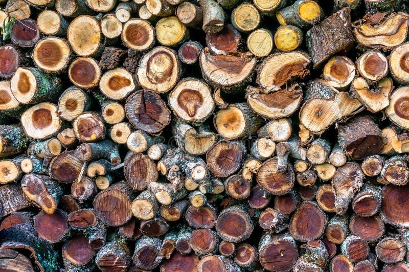 Stapel van brandhout met gezaagd crosscuts stock afbeeldingen