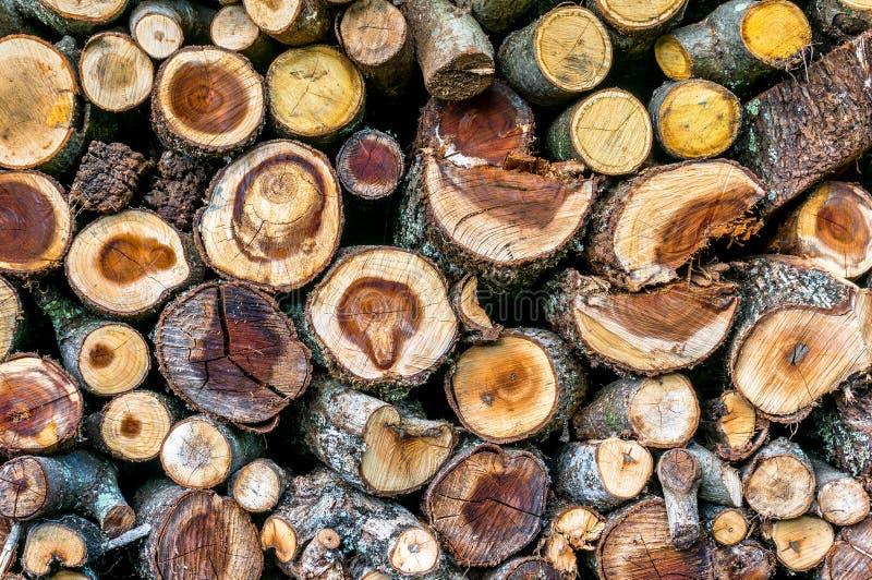 Stapel van brandhout met gezaagd crosscuts stock fotografie