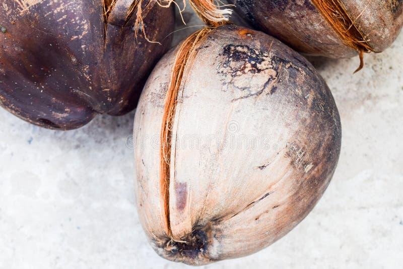 Stapel van droge kokosnoten voor kok royalty-vrije stock fotografie