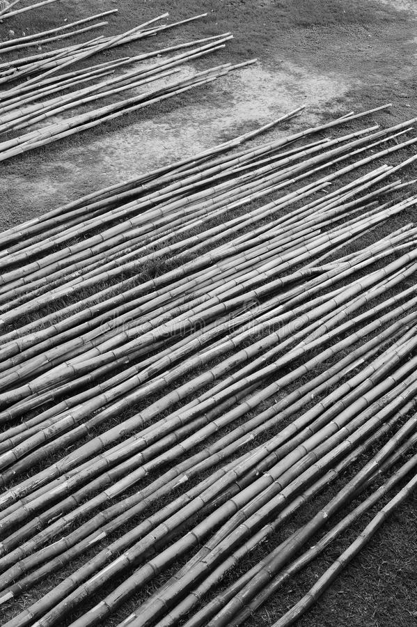 Stapel van droog bamboe royalty-vrije stock foto's