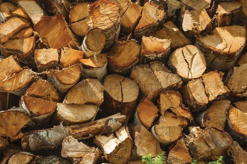 Stapel van gesneden rustiek hout in een zonnige dag stock foto