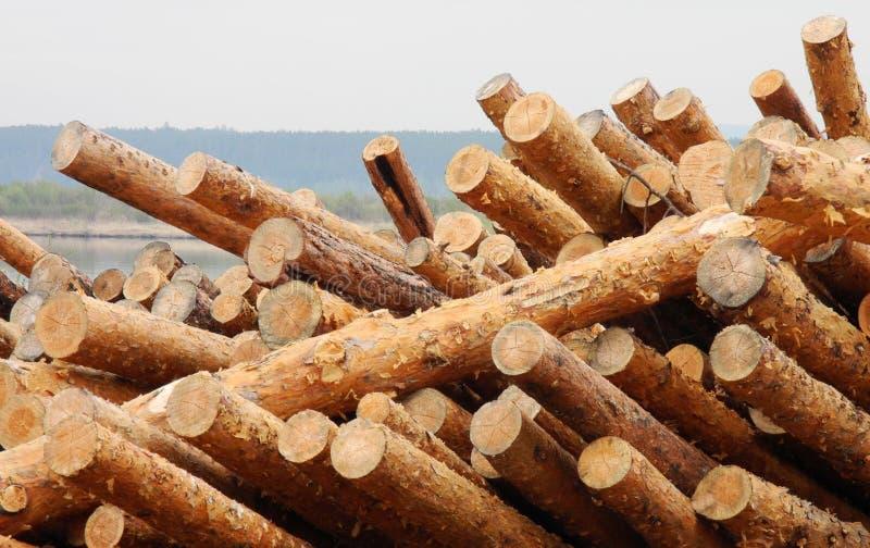 Stapel van hout stock foto's
