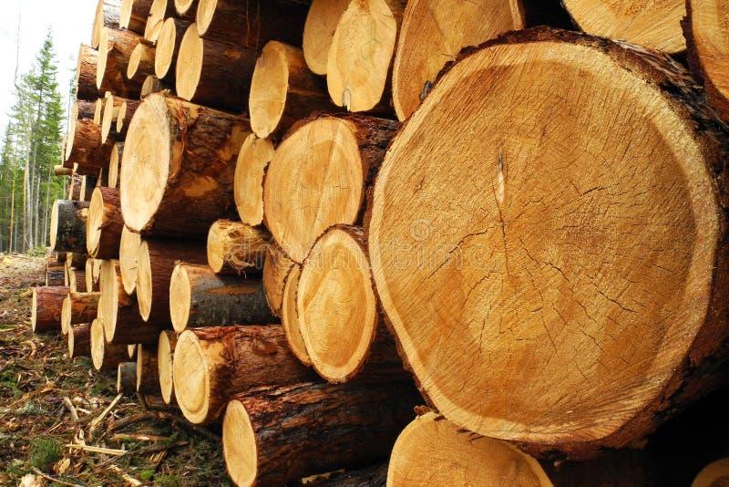 Stapel van hout royalty-vrije stock afbeeldingen