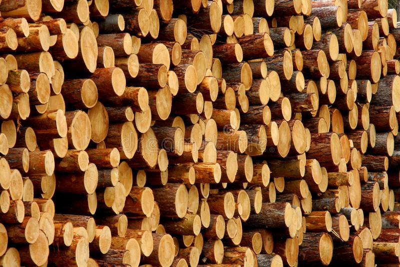 Stapel van hout royalty-vrije stock fotografie