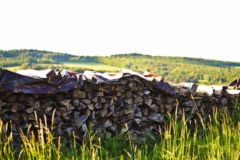 stapel van hout met gras, bomen en blauwe hemel stock foto