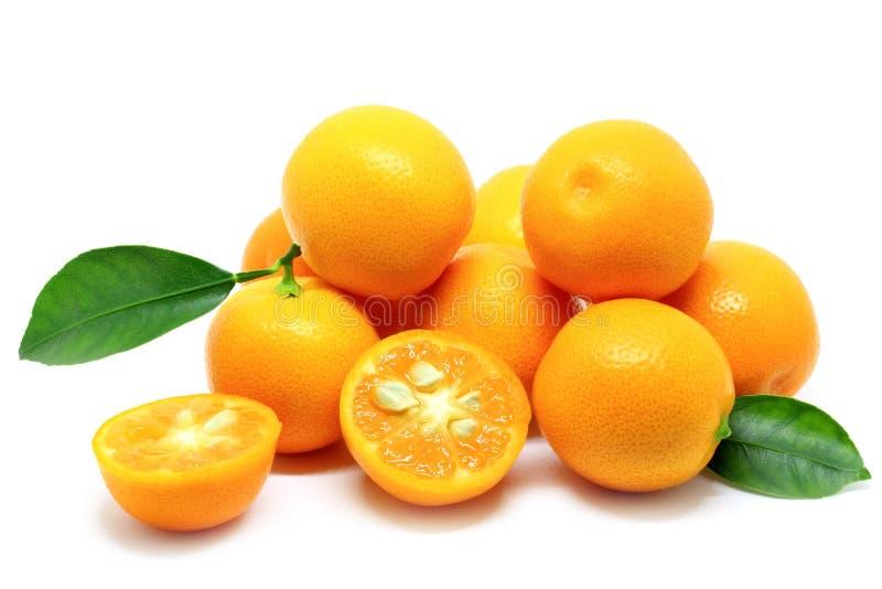 Stapel van Kumquats op Wit wordt geïsoleerd dat stock afbeelding