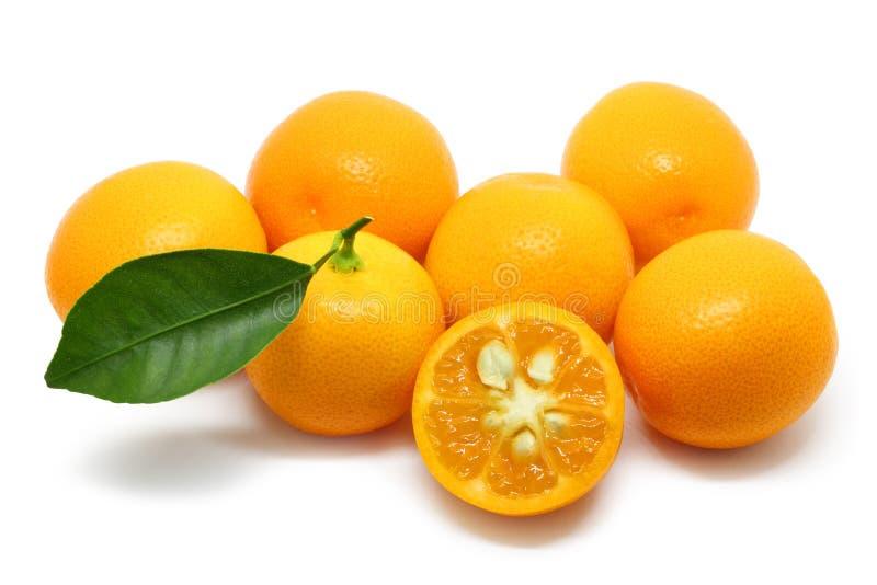 Stapel van Kumquats op Wit wordt geïsoleerd dat stock foto