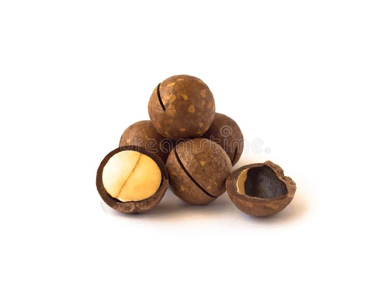 Stapel van macadamia noten met gezaagde notedop stock foto's