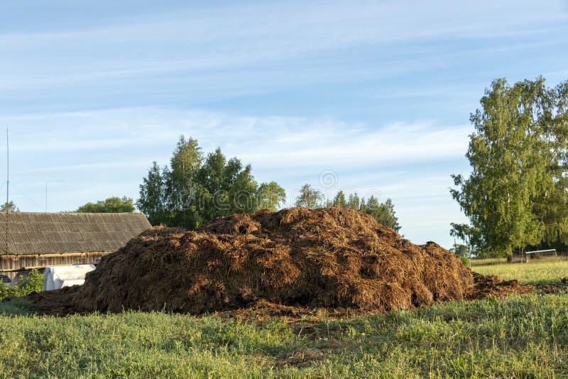 Stapel van Mest op organisch groen landbouwbedrijfgebied in platteland bij zonsopgang royalty-vrije stock foto