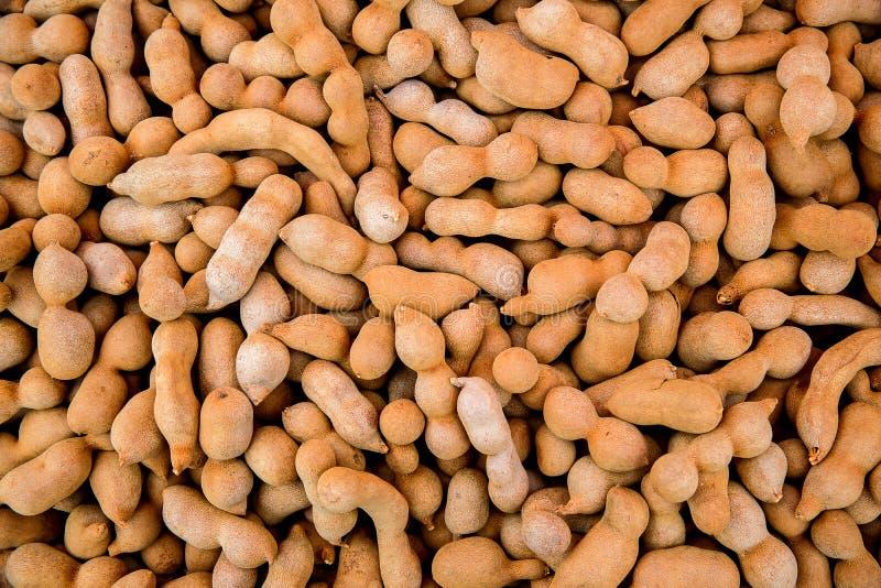Stapel van rijpe Tamarindevruchten Zoete rijpe tamarindes De achtergrond van het tamarindefruit stock afbeelding