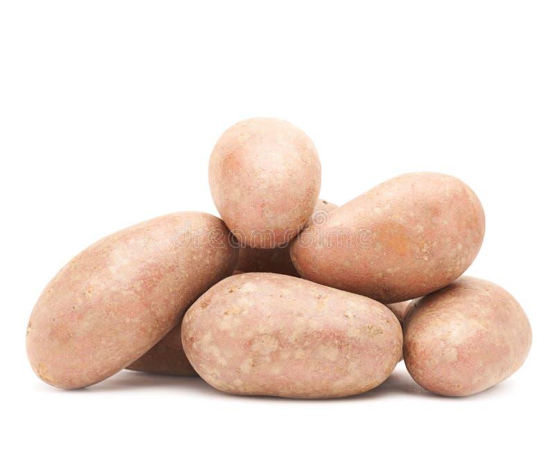 Stapel van veelvoudige geïsoleerde aardappels royalty-vrije stock foto's
