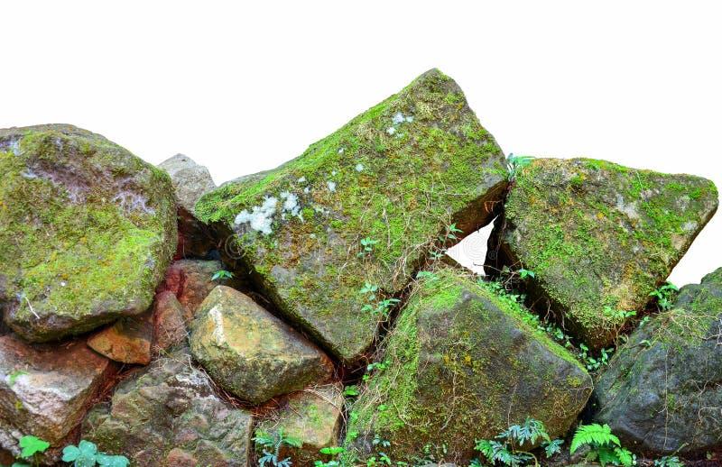 Stapel van verschillende die vorm van stenen met groen die mos worden behandeld, op witte achtergrond wordt geïsoleerd stock foto