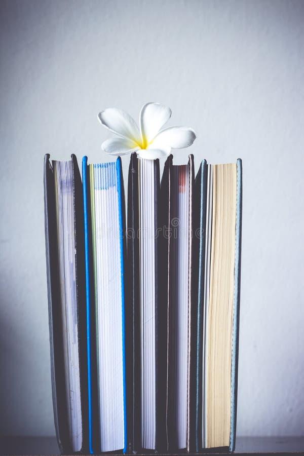 Stapel von Büchern und von Frangipaniblume lizenzfreie stockfotos