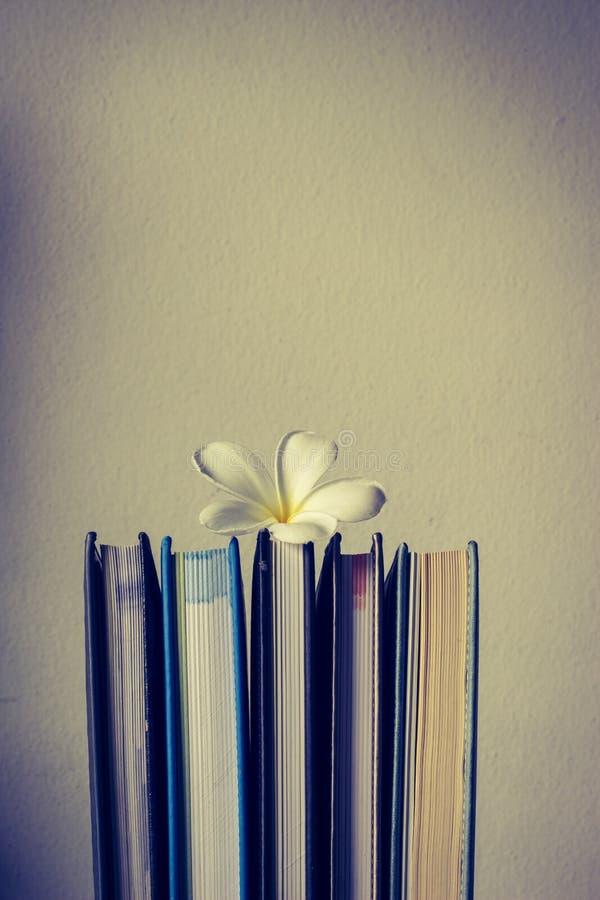 Stapel von Büchern und von Frangipaniblume stockfotos