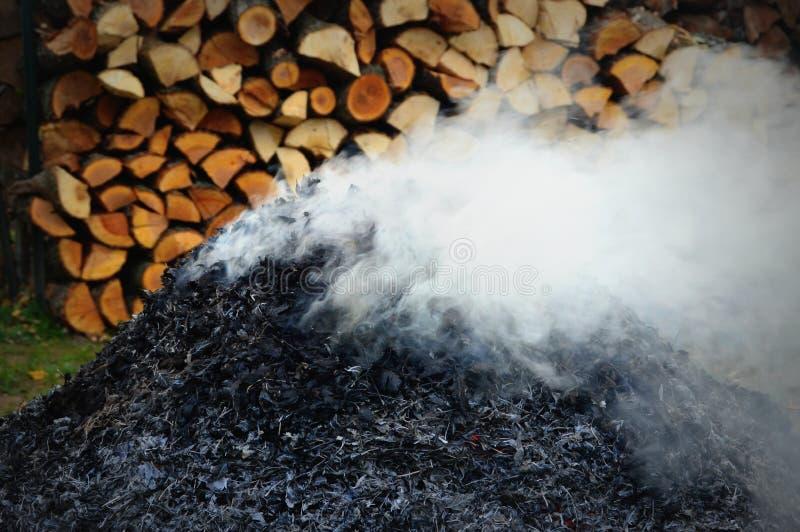 Stapel von brennenden Blättern stockfoto