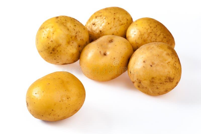 Stapel von den frischen, gelben, reifen Kartoffeln, lokalisiert auf Weiß Nahes u lizenzfreie stockfotos