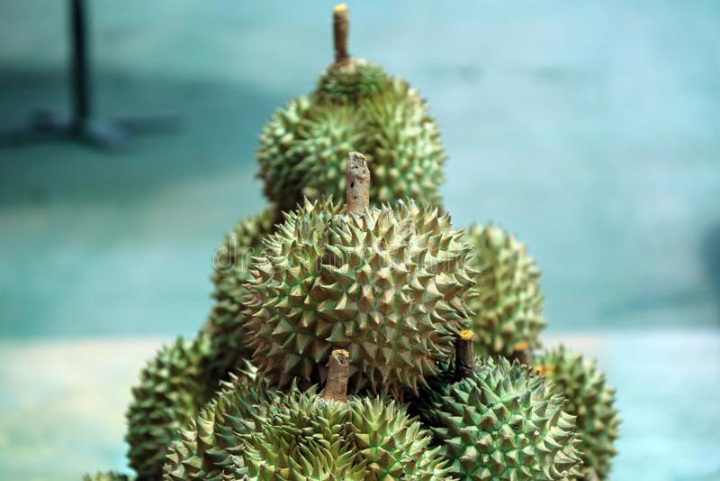 Stapel von Durian, eine ovale stachelige tropische Frucht, die eine sahnige Masse enthält stockfotografie