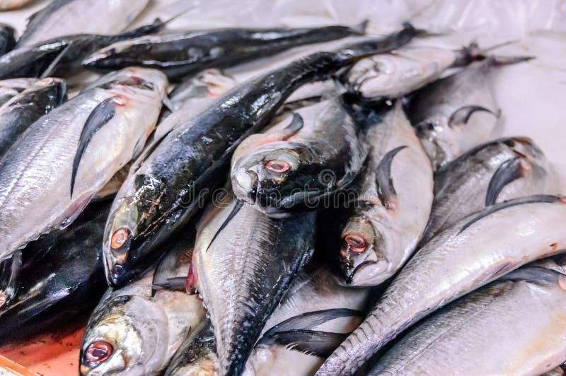 Stapel von Fischen im Fischmarkt lizenzfreie stockfotografie