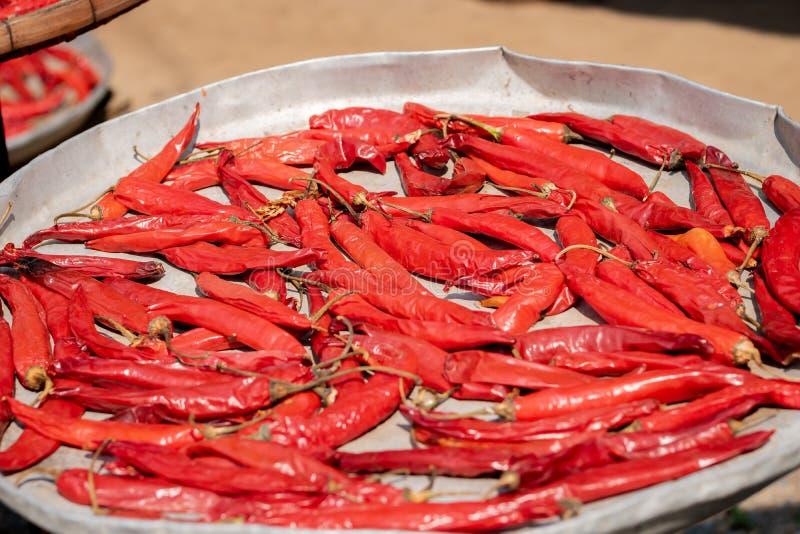 Stapel von getrockneten gl?henden Paprikapfeffern, Lebensmittelinhaltsstoff, getrockneter roter Paprika auf Beh?lter lizenzfreie stockbilder