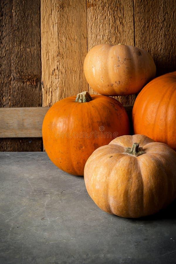 Stapel von verschiedenen Arten von Kürbis-verschiedenen Farben orange Pale Peach auf Steinhintergrund-Scheune verwittertem Holz lizenzfreies stockfoto