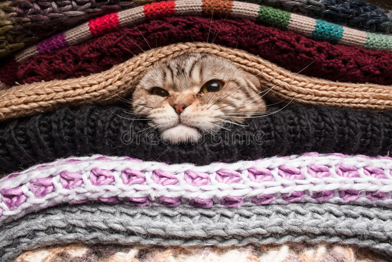 Stapel von woolen Kleidung stockfoto