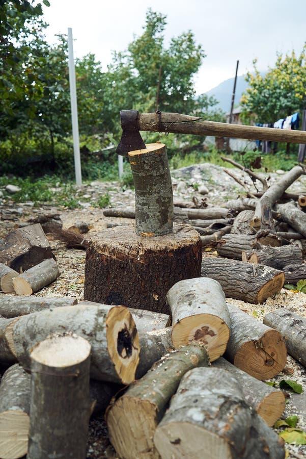 Stapels van brandhout in het bos, close-up royalty-vrije stock afbeelding