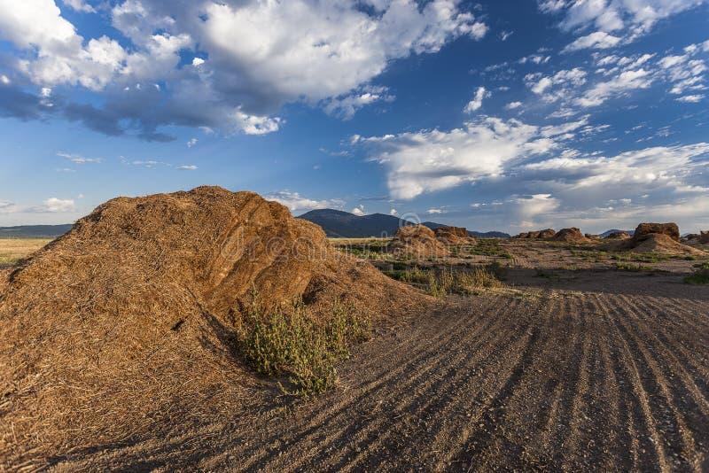Stapels van meststof op landbouwbedrijfgebied stock afbeeldingen