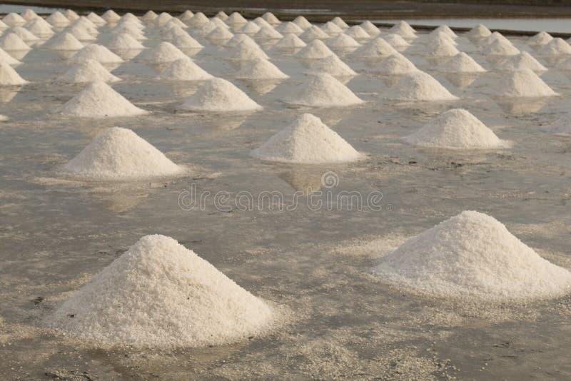 Stapels van overzees zout in het zoute landbouwbedrijf onder middagzonlicht stock afbeelding
