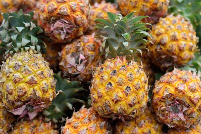 Stapels verse gehele ananasvruchten bij de landbouwersmarkt van Israël stock foto's