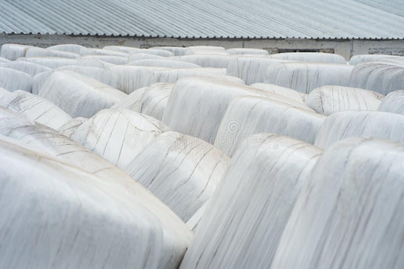 Staplade baler av skördat hö som slås in med den plast- filmen på royaltyfri fotografi