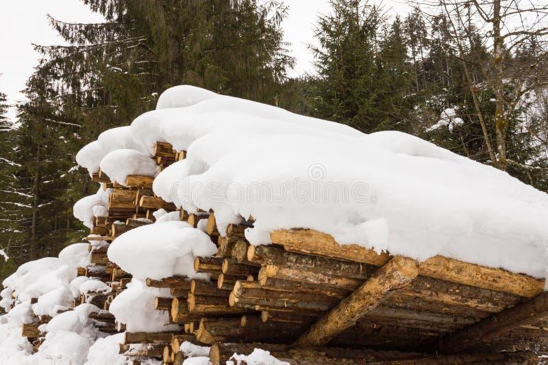 Staplat trä som täckas med snö, fjällängar Österrike i Salzburg fotografering för bildbyråer